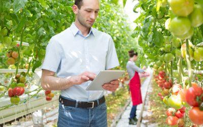 NetSuite FoodQloud voor AGF-telers