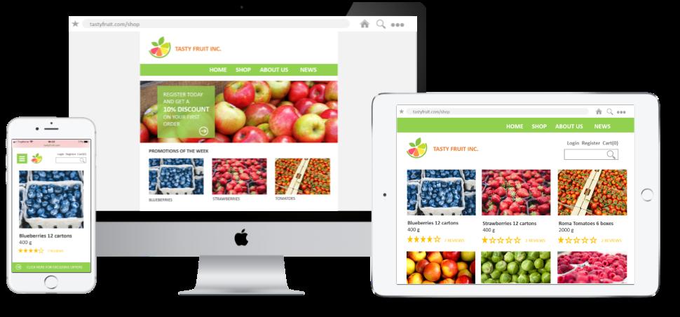 ecommerce webshop netsuite fresh produce agf fruit groente online verkoop