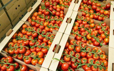Webinar: NetSuite FoodQloud AGF op 27 mei