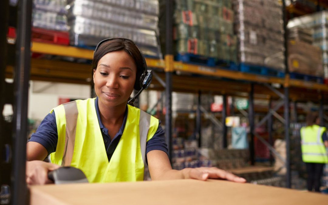cycle counting netsuite erp food warehouse wms
