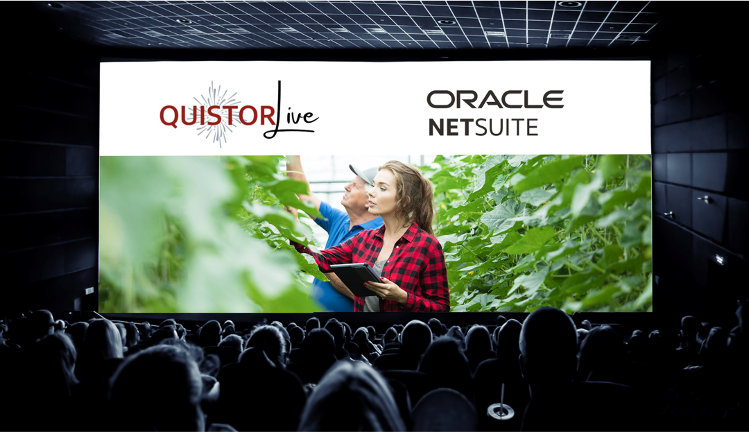 NetSuite stream tijdens Quistor Live op 21 april